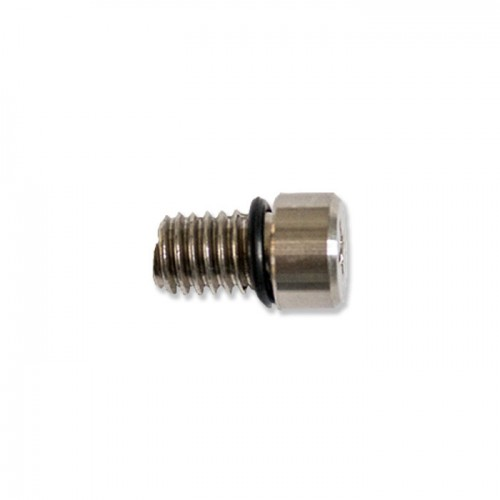 Airvalve Screw + Rubber Ring